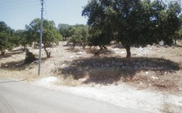 ارض للبيع في ابو السوس 687م - القرية البحاث حوض 6 الدبة - تنفع لفيلا