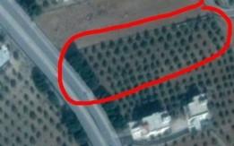قطعة ارض مميزه للبيع في سما الروسان/اربد ، تقع على طريق ام قيس الرئيسي