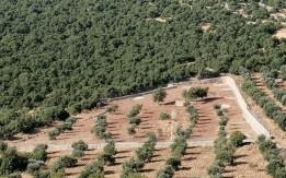 مزرعة  7600 متر للبيع  مع  اطلالة جميلة