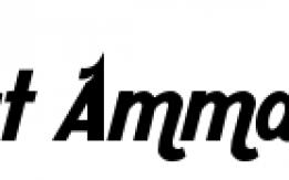 مشروع مول للاردن على الانترنت للاسثمار أو الشراكة