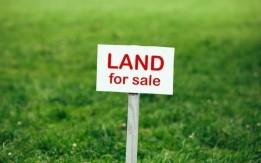 ارض للبيع في شفا بدران بالقرب من جامعة العلوم التطبيقيه 530