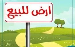 ارض للبيع في ياجوز حوض الدفيانه 526