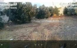 قطعة أرض سكنيه مميزة في البارحة حوض اتساسيه شارع فوعرا