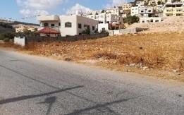 قطعة ارض للبيع في ام الدنانير سكنية