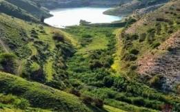 مزرعه 4 دونم في ارخيم دير ابي سعيد عجلون